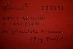 03051-sottoipadiglioni-retro4